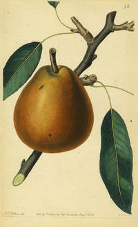 A Pear Print from the Pomological Magazine