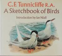 A sketchbook of birds.