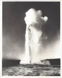 13040 Old Faithful Geyser, Yellowstone Park