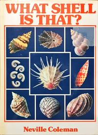 WHAT SHELL IS THAT?