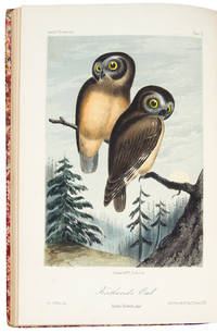 Illustrations of the Birds of California, Texas, Oregon, British and Russian America. Intended to contain descriptions and figures of all North American birds not given by former American authors, and a general synopsis of North American Ornithology