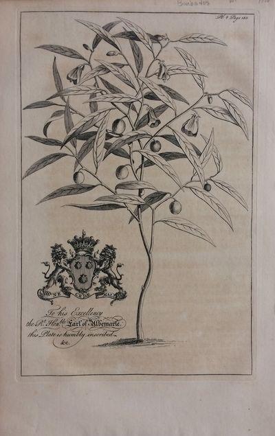 London, 1750. unbound. Engraving. Image measures 11.25