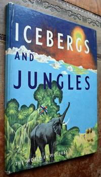 Icebergs And Jungles