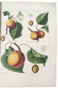 Le Jardin Fruitier, contenant l'histoire, la description, la culture et les usages des arbres fruitiers, des fraisiers, et des meilleures espèces de vignes qui se trouvent en Europ