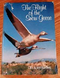 The Flight Of The Snow Geese.