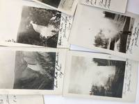 [Collection of Twenty-two Vernacular Real Photo Postcards of Yellowstone National Park]