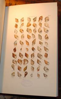 Index Testaceologicus, an illustrated catalogue of British and Foreign Shells, containing about 2800 figures accurately coloured after nature