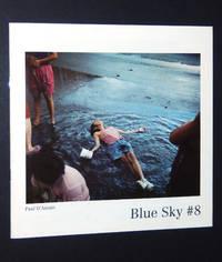 Blue Sky #8: 1993 Photography Exhibition Catalogue