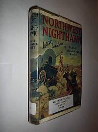 North-West Nighthawk