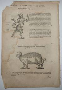 16th-century leaf with two illustrations showing monsters that result from the mixing of species from Ambroise Paré's Monsters
