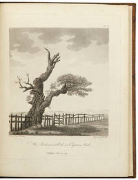 Descriptions and sketches of some remarkable oaks, in the park at Welbeck, in the county of Nottingham, a seat of His Grace the Duke of Portland. To which are Added, Observations on the Age and Durability of that tree. With Remarks on the Annual Growth of the Acorn