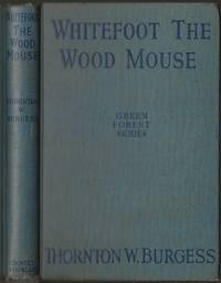 image of Whitefoot the Wood Mouse