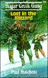 image of Lost in the Blizzard