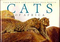CATS OF AFRICA.