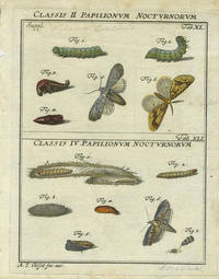 Classis II  Papilionum Nocturnorum Classis IV Papilionum Nocturnorum