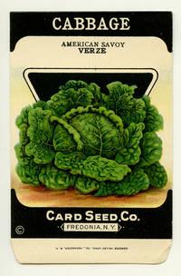 Cabbage (american savoy)