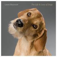 The Life and Love of Dogs