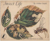 Insect Life (Puffin Picture Book 66)