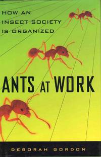 Ants at Work How an Insect Society is Organized
