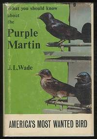 What You Should Know About The Purple Martin: America's Most Wanted Bird