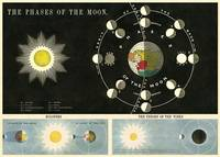 """Cavallini & Co. Phases Of The Moon Chart Decorative Paper Sheet 20"""" x 28"""" (Spanish..."""