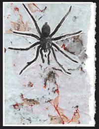image of Tarantula (detail, 1911)