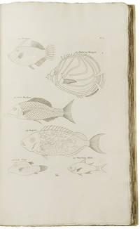 Poissons Ecrevisses et Crabes, de diverses couleurs et figures extraordinaires, que l'on trouve autour des Isles Moluques et sur les cotes des Terres Australes
