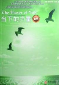 image of The Power of Now (New Edition) (Chinese Edition)