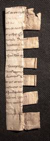 Cutting from a Carolingian liturgical book early C9th [MS]