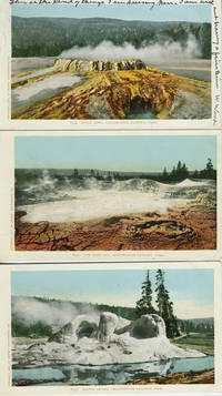 Seven Souvenir Postcards from Yellowstone National Park, Wyoming