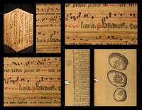 Simplicium medicamentorum ex novo orbe delatorum, quorum in medicina usus est, historiae