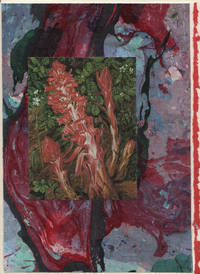 image of Crimson Snow Plant detail on a one-of-a-kind hand marbled paper composition presented on a blank note card.