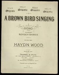 image of A Brown Bird Singing