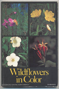 Wildflowers in Color