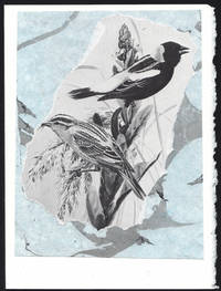 image of Bobolink detail on a one-of-a-kind hand marbled paper composition presented on a blank note card.