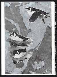 image of Dovekie detail on a one-of-a-kind hand marbled paper composition presented on a blank note card.