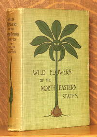 image of WILD FLOWERS OF THE NORTH-EASTERN STATES
