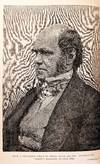 View Image 2 of 5 for The Life and Letters of Charles Darwin, Including an Autobiographical Chapter. . Inventory #RW1042