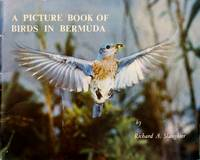 image of A Picture Book of Birds in Bermuda