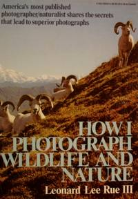 How I Photograph Wildlife and Nature