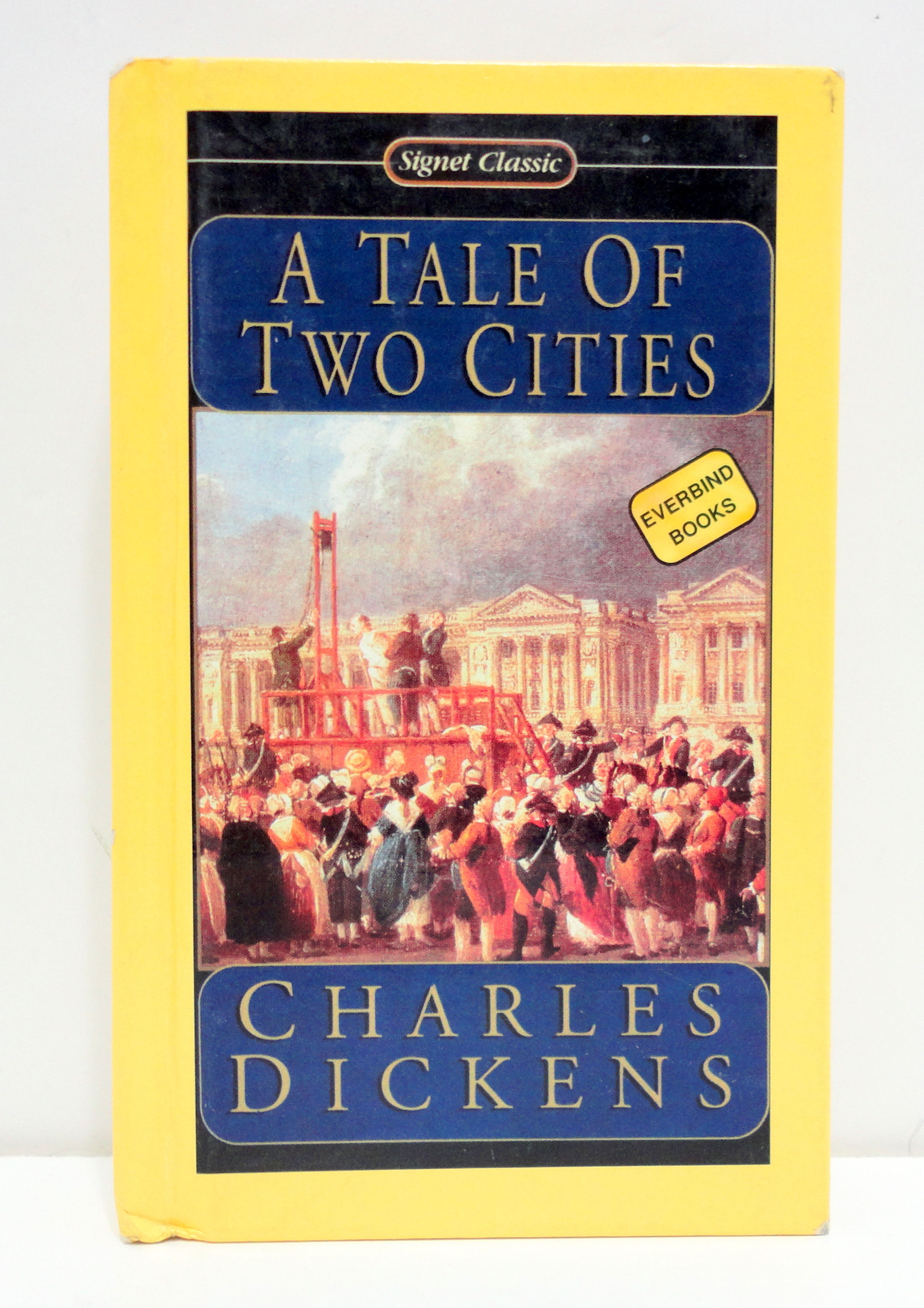 an analysis of the french revolution in a tale of two cities by charles dickens A tale of two cities study guide contains a biography of charles dickens,   questions, major themes, characters, and a full summary and analysis  dickens  relied heavily on thomas carlyle's the french revolution when.
