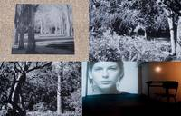 JARDINES DE LA MEMORIA: PHOTOGRAPHS BY ANA TERESA ORTEGA: THE EXHIBITION CATALOG