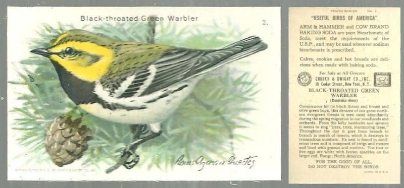 VICTORIAN TRADE CARD FOR CHURCH AND DWIGHT COW BRAND BAKING SODA, USEFUL BIRDS OF AMERICA SERIES, THE BLACK THROATED GREEN WARBLER, Advertisement