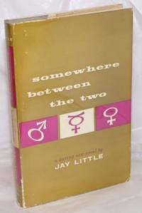 image of Somewhere Between the Two: a new novel