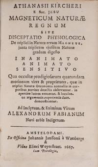 Magneticum Naturae Regnum