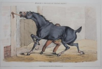 London: Thomas M'Lean, 1824. First edition. Half Morocco. Very Good. Oblong, 26 by 37 cm. 49 hand-co...
