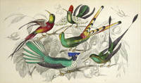 image of Hand Colored Copper Engraved Natural History Print Of Hummingbirds, From Oliver Goldsmith's A History Of The Earth And Animated Nature