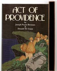 image of ACT OF PROVIDENCE [AN EPISODE IN THE CAREER OF LUCIUS LEFFING]