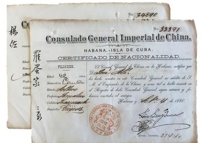 Two official immigration registration forms, completed in manuscript by hand in Havana, 1880.Contemp...