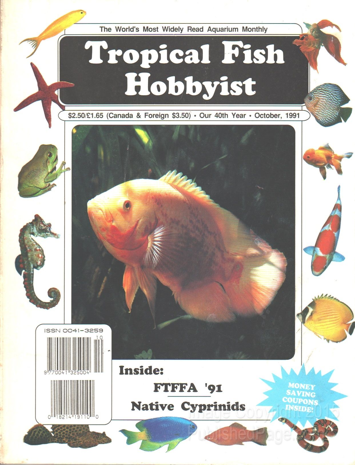 Tropical fish hobbyist 1991 october by raymond e for Tropical fish magazine